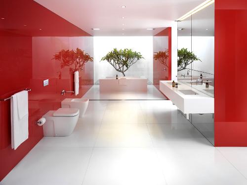 В каких случаях лучше всего заказывать тот или иной вариант эмалировки (покраски) ванны?
